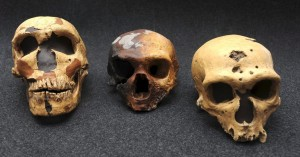 Cossins neanderthal